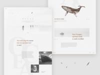 Ocean - landing page