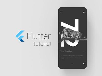 SY Expedition - Flutter tutorial mobile app layout flutter minimal animation concept ux ui