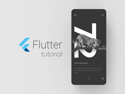 SY Expedition - Flutter tutorial mobile app layout flutter minimal animation concept ux ui
