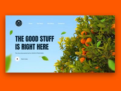 Orange Web UI