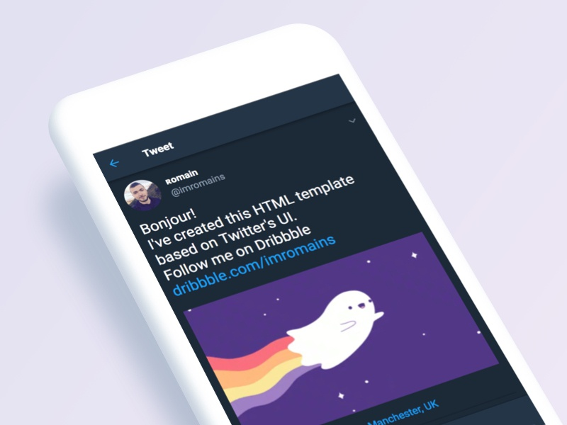 Individual tweet HTML template by Romain Sourdiaux on Dribbble
