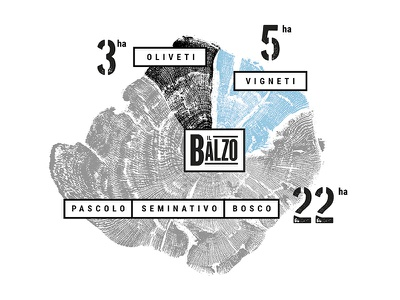 Infographic Il Balzo rufina chianti woodprint tuscany wine infographic
