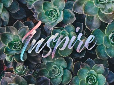 Inspire plants succulents pen brush calligraphy lettering
