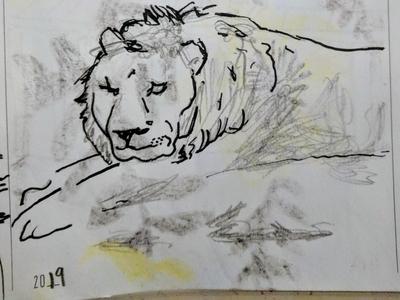 Rembrandt's Lion