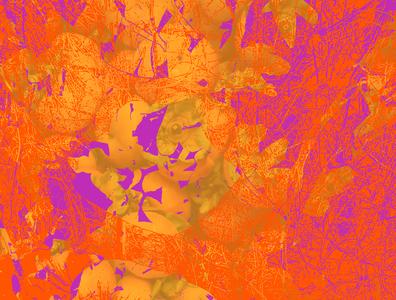 Food in Orange purple orange vector art vector