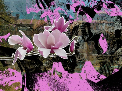Along the Bay photography purple black flowers vector art vector