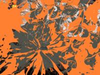 Flowers through Orange and Gray