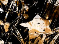 Flowers in Reverse