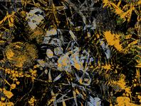 Ferns in Yellow
