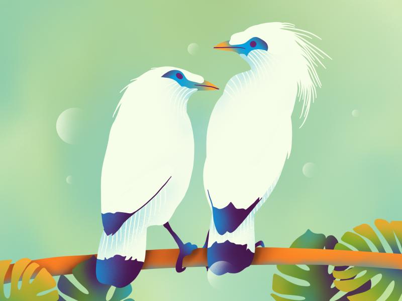 Lovers flat web procreate texture ux ui simple icons download icon graphic bird branding brand art animation illustration