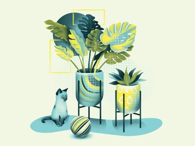 Plants&cat cat plant illustration iconography graphicdesign graphic plant art icon web simple ux ui flat texture design vector illustration