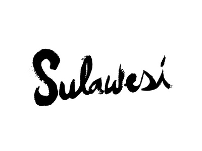 Sulawesi packaging bw coffee lettering script type brush