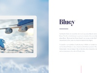 Full case bluey02