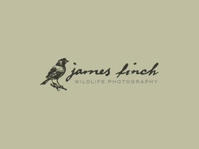 Finchdribble wildlife photography logo photographer