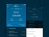 Citibank App Concept