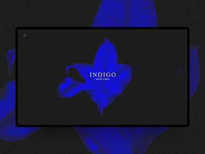 Indigo music label webdesign clean desktop blue web ux ui dark