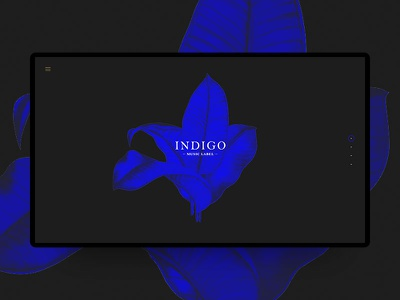 Indigo music label webdesign clean desktop blue web ux ui dark