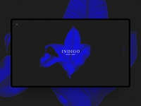 Indigo music label