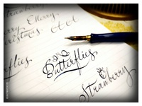 Butterflies. Calligraphy sketches