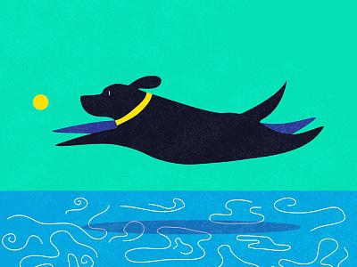 Go fetch! water tennis ball black lab dogdaysofsummerart dog