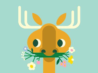 Moose & Midsummer