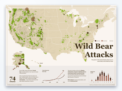 Wild Bear Attacks DataVisualization design dataviz datastory datavisualization