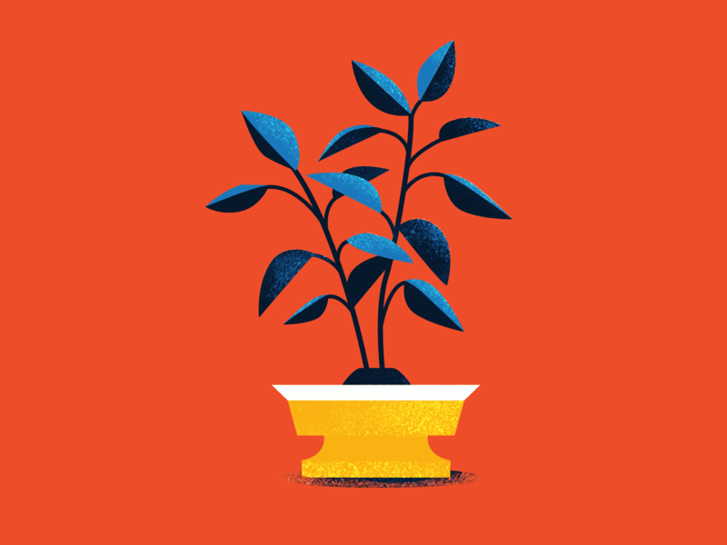 Plant Study 01 design flat minimal adobe illustration vector plant illustration pot dirt indoor plant plant office