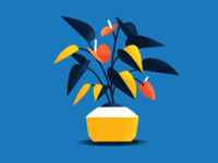 Plant Study 03