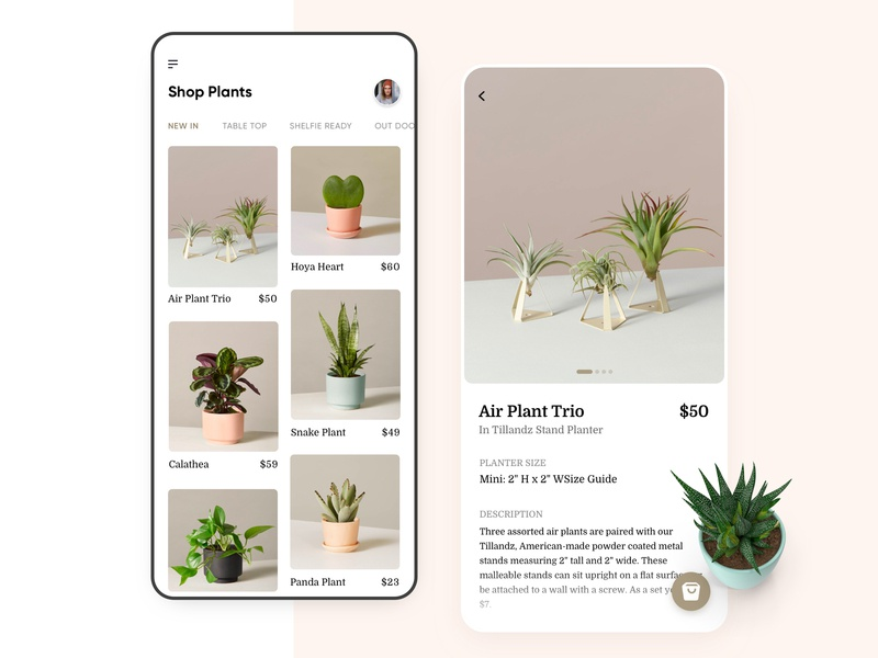 Ecommerce Plant UI Concept user experience illustration ecommerce design minimal shopify shop plant app app design typography mobile clean iphone app design interface ios ux ui ecommerce ecommerce app