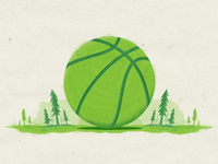 Basketball in the woods