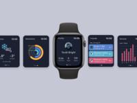 Apple Watch App for Ski Resort