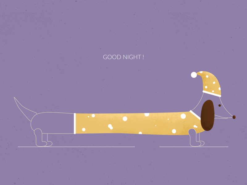 Good Night! colour character art artist style frame sleep dog texture design illustration