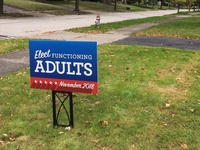 Elect Functioning Adults - November 2018 2.0