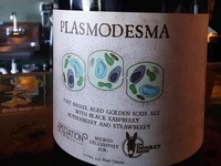 Plasmodesma - Sour Beer Label
