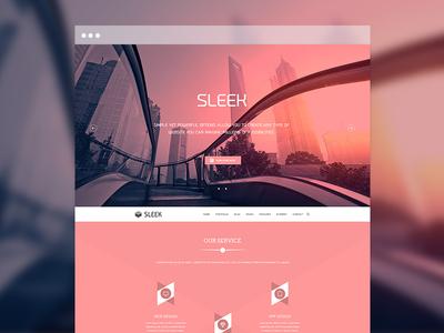 Sleek Multipurpose Website Part 4