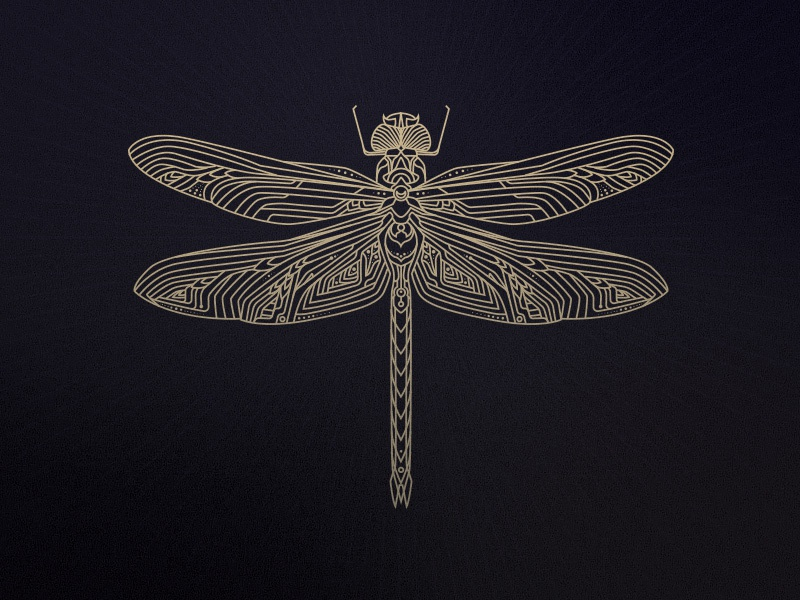 Dragonfly mark logo dragonfly illustration