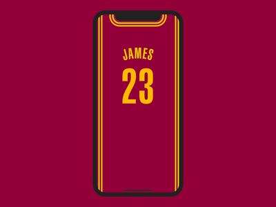 Embrace the Notch notch basketball wallpaper iphone x iphone