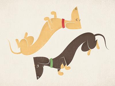 Dachshunds dog dachshund vector cartoon animal cute funny illustration flat vintage wiener etsy