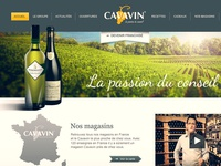 Cavavin website