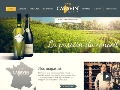 Cavavin website ux flat simple grape vin webdesign wine
