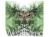 Weathered.
