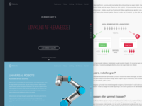 Webnuts Website Relaunch