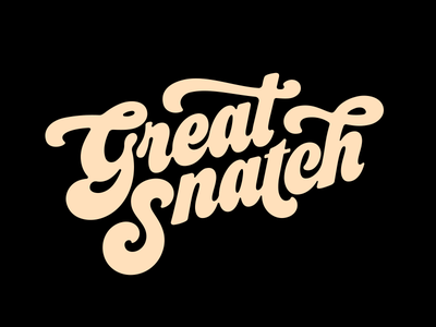 Great Snatch netball typography sports branding lettering logotype logo great snatch