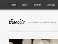 Reactiv - Responsive Child Theme for Thesis and Genesis