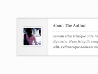 Styled WordPress Author Box for Genesis