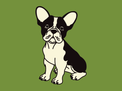 Who Let The Doge Out? french bulldog dog animal flat branding vector design illustration
