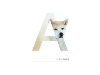 A - Akita design letter breed akita dog