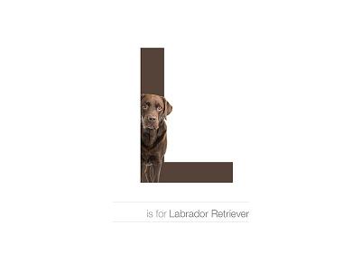 L - Labrador Retriever andreiclompos dogalphabet alphabet letter breed dog labrador