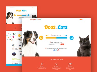 Dogs vs. Cats Campaign game landing page blue yellow team friendly versus campaign cats cat dog dogs