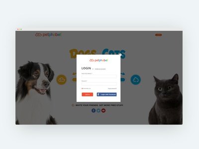 Dogs vs. Cats Login & Create Account screen create account login cats dogs